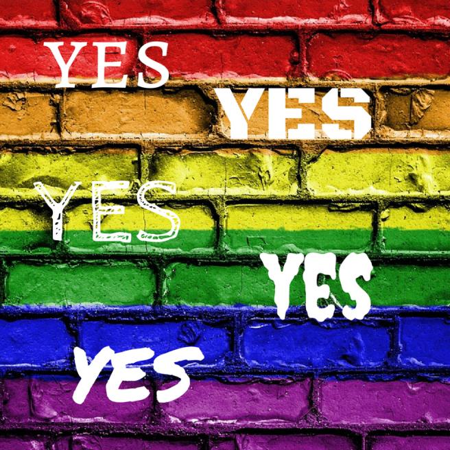 rainbow flag1
